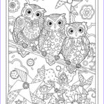 Owl Coloring Book New Collection Creative Haven Owls Coloring Book By Marjorie Sarnat