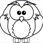 Owl Coloring Book Unique Collection Baby Owls Coloring Sheet To Print