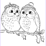 Owl Coloring Book Unique Photos Couple Of Cute Owls Coloring Page