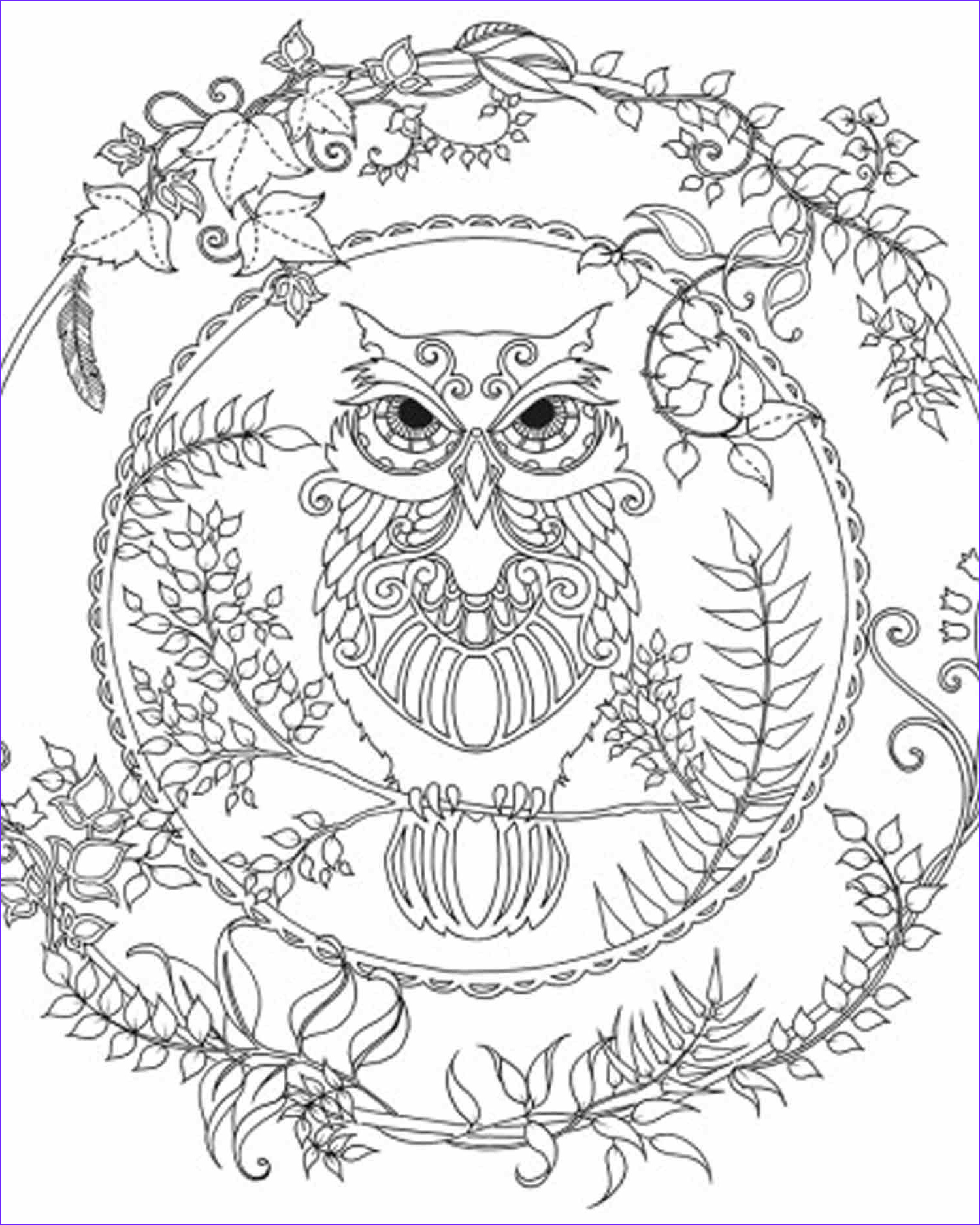 Owl Coloring Books for Adults Awesome Collection Brightbird Free Adult Coloring Pages