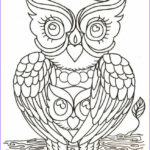 Owl Coloring Books For Adults Awesome Collection Mom & I As Owls 6 23 2017