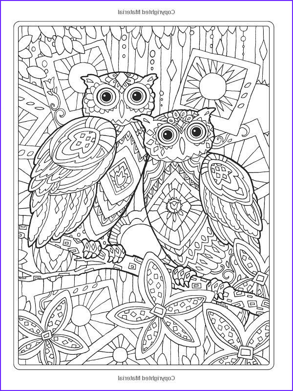 Owl Coloring Books for Adults Awesome Gallery Pin by atefeh Ghaedi On
