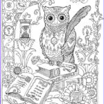 Owl Coloring Books For Adults Beautiful Collection Owl Coloring Pages For Adults Free Detailed Owl Coloring