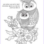 Owl Coloring Books For Adults Beautiful Image 1174 Best Images About Ö Adult Colouring Owls Birds