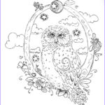 Owl Coloring Books For Adults Beautiful Image Owl Coloring Pages For Adults Free Detailed Owl Coloring