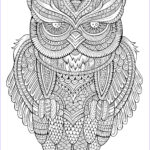 Owl Coloring Books For Adults Beautiful Image Peaceful Owl Owls Adult Coloring Pages
