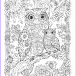 Owl Coloring Books For Adults Beautiful Photos 45 Best Images About Amo Corujas On Pinterest