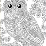 Owl Coloring Books For Adults Beautiful Photos N 679