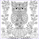 Owl Coloring Books For Adults Best Of Collection Owl Coloring Pages For Adults Free Detailed Owl Coloring