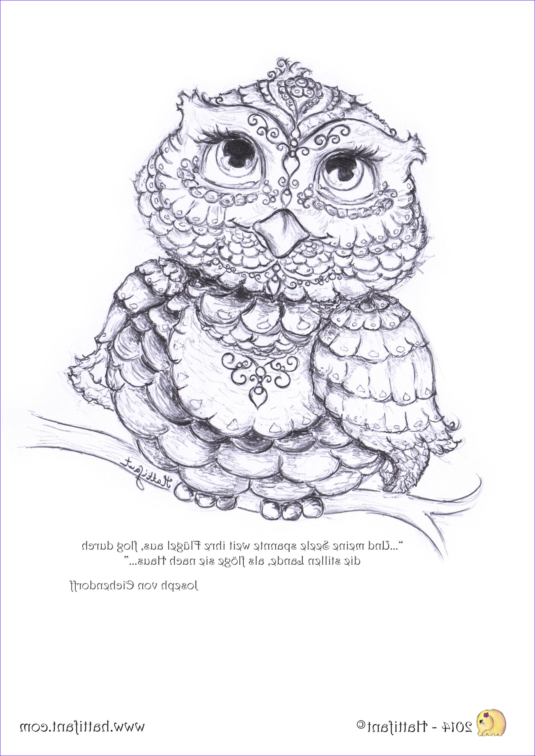 Owl Coloring Books for Adults Best Of Photography Being Up with the Owls Hattifant