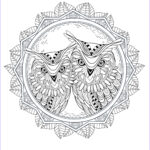 Owl Coloring Books For Adults Best Of Photos Owl Coloring Pages For Adults Free Detailed Owl Coloring