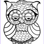 Owl Coloring Books For Adults Elegant Images Owl Coloring Pages For Adults Free Detailed Owl Coloring