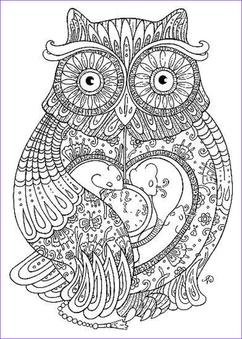Owl Coloring Books for Adults Elegant Stock Owl Coloring Pages for Adults Printable Kids Colouring