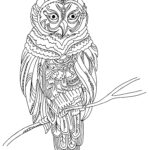 Owl Coloring Books For Adults Inspirational Stock Lots Of Coloring Possibilities