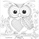 Owl Coloring Books for Adults Luxury Image 08c331f15e1b130a6beca4c243f21c8a 2480×3507