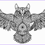 Owl Coloring Books For Adults Luxury Image Free Printable Owl Coloring Pages For Kids
