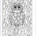 Owl Coloring Books For Adults Luxury Stock The Eclectic Owl An Adult Coloring Book By G T Haddix