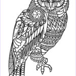 Owl Coloring Books For Adults New Photos Free Book Owl Owls Adult Coloring Pages