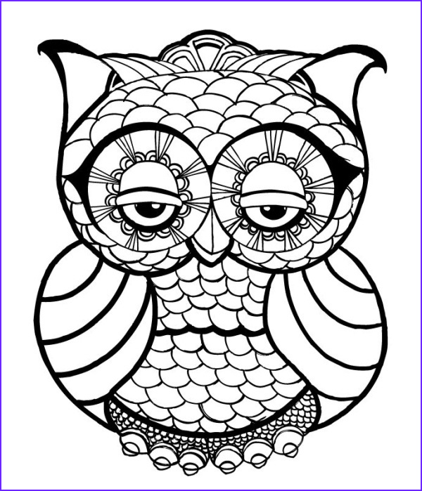 Owl Coloring Cool Photography Owl Coloring Pages for Adults Free Detailed Owl Coloring