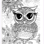 Owl Coloring Pages For Adults Beautiful Collection Awesome Owls Coloring Book By Fox Chapel Publishing