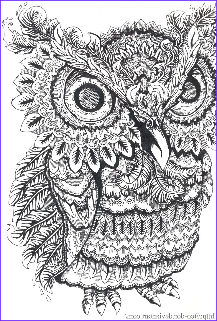 Owl Coloring Pages for Adults Beautiful Photos I M Going to Start Colouring Again for My Zen Destressing