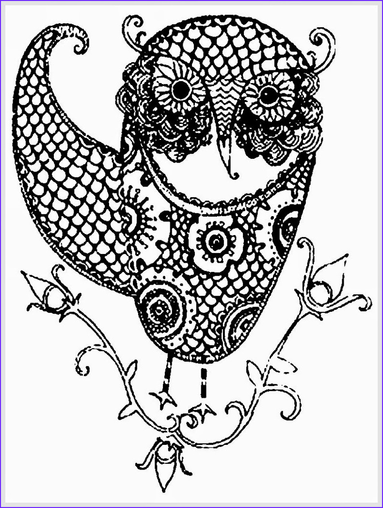 Owl Coloring Pages for Adults Cool Photography Owl Coloring Pages for Adults