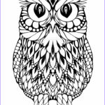 Owl Coloring Pages For Adults Elegant Photos Owl Coloring Pages Coloring Pages & Imagixs