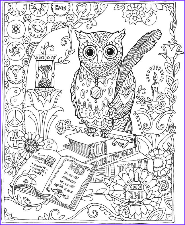 Owl Coloring Pages for Adults Luxury Gallery Owl Abstract Doodle Zentangle Coloring Pages Colouring
