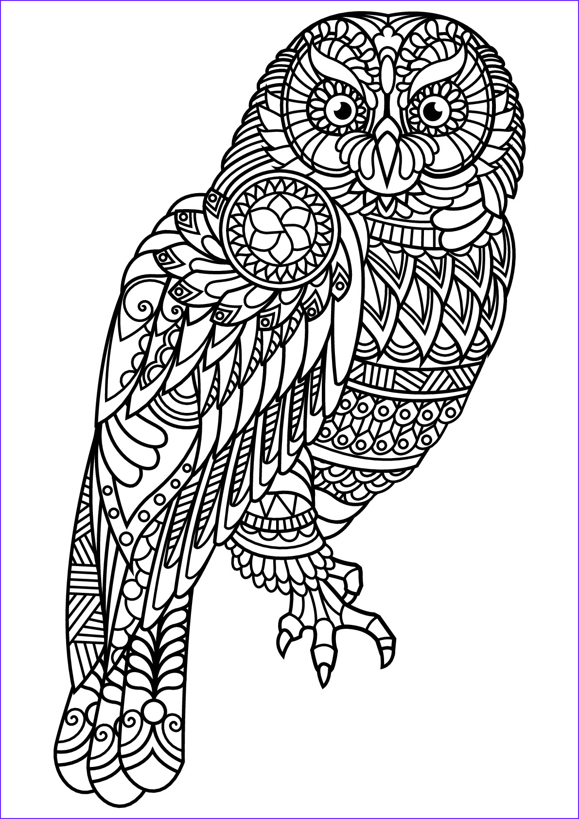 image=owls coloring free book owl 1