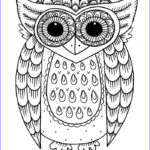 Owl Coloring Pages For Adults New Image The 335 Best Owl Coloring Pages Images On Pinterest
