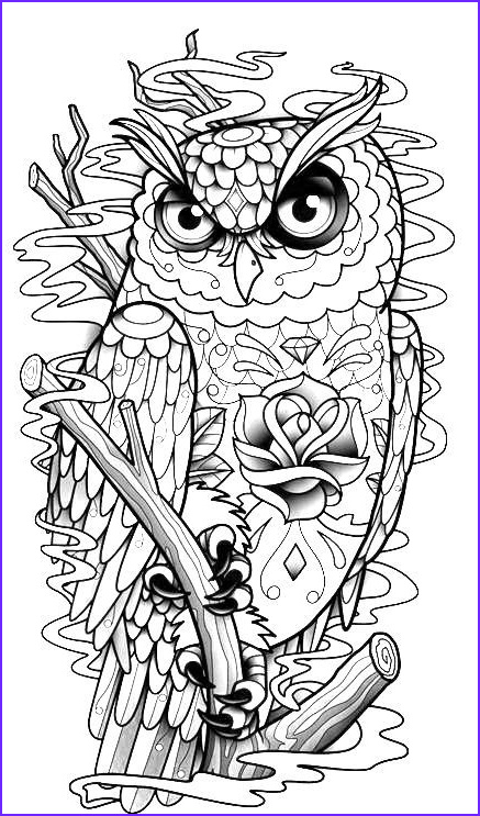 Owl Coloring Pages for Adults New Photos Owl Coloring Page