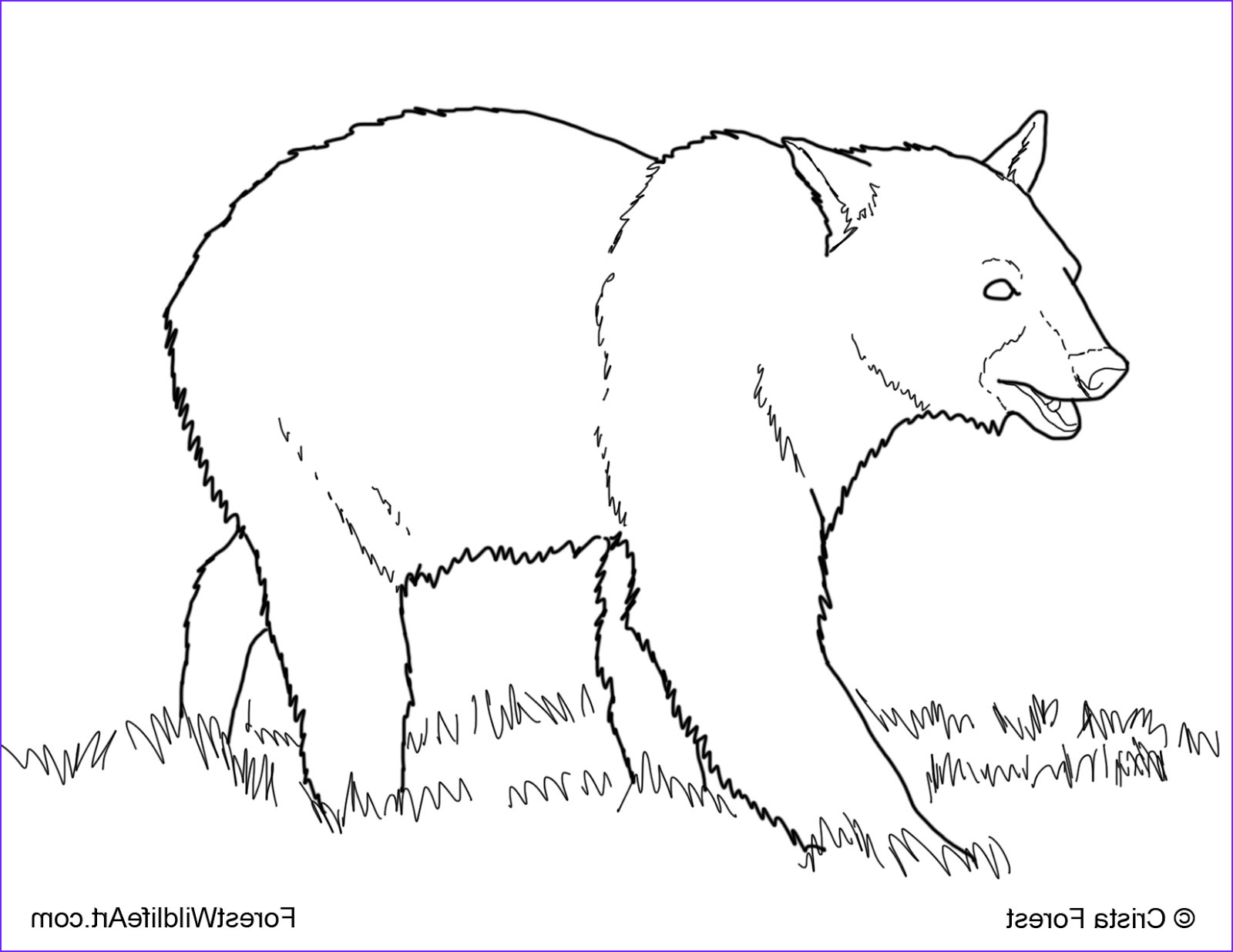 Paint Coloring Pages Cool Collection Crista Forest S Animals & Art Coloring Book Page For Kids
