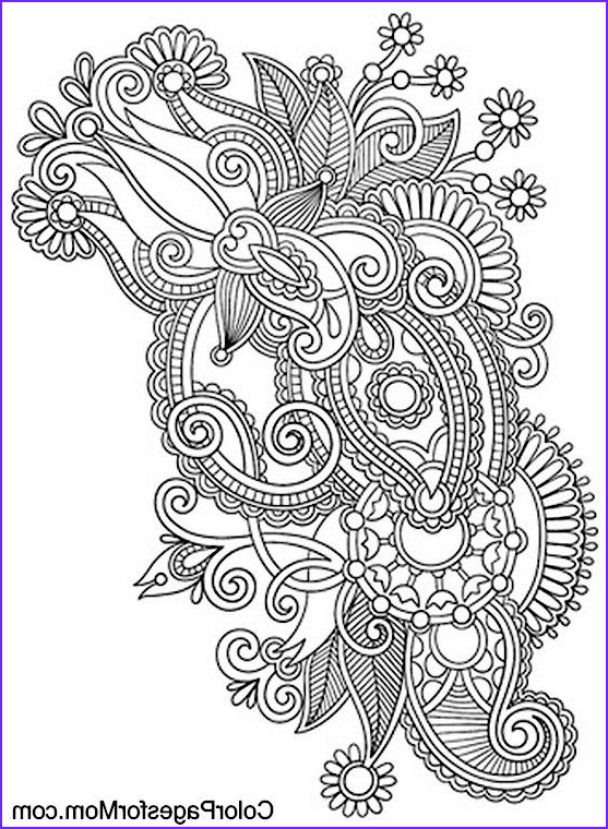 Paisley Coloring Book Best Of Gallery Paisley Coloring Page