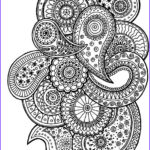 Paisley Coloring Book Best Of Stock Paisley Coloring Page