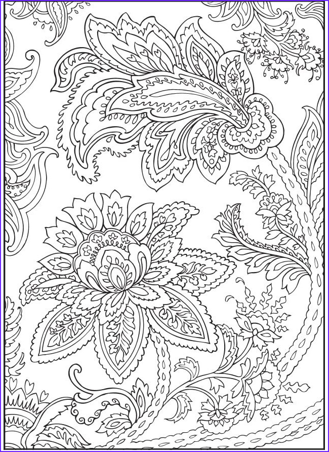 Paisley Coloring Book Unique Photos Paisley Flowers Abstract Doodle Coloring Pages Colouring