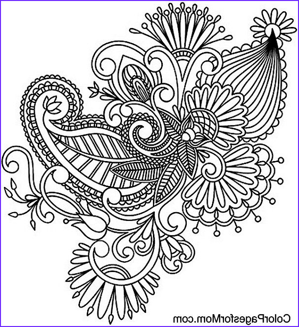 Paisley Coloring Books Beautiful Gallery Paisley Coloring Page Coloring Pages Pinterest