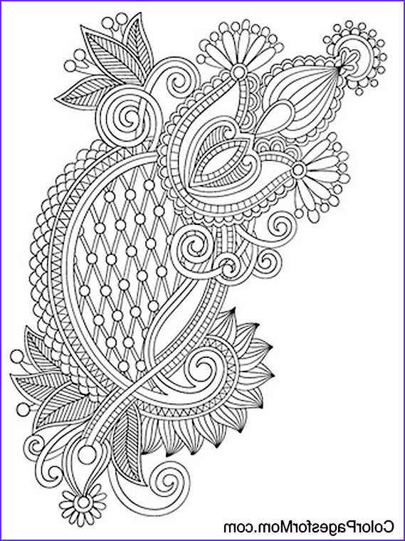 Paisleys Coloring Book New Photos Paisley Abstract Doodle Zentangle Coloring Pages Colouring