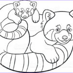 Panda Coloring Sheet Best Of Image Coloring Pages Mother Red Panda With Her Cute Baby
