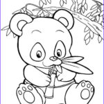 Panda Coloring Sheet New Collection Pin By Shreya Thakur On Free Coloring Pages