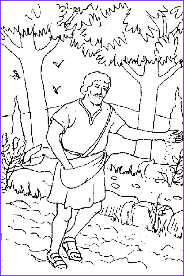 Parable Of the sower Coloring Page Beautiful Collection Mustard Seed Coloring Page Sketch Coloring Page