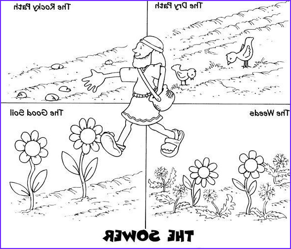 Parable Of the sower Coloring Page Beautiful Photos 68 Best Images About Bible Parable Of the sower On