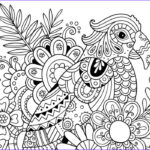 Pattern Coloring Books For Adults Elegant Photos How To Draw Zentangle Patterns Hobbycraft Blog