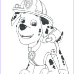 Paw Patrol Coloring Book Elegant Photos 1000 Images About Paw Patrol On Pinterest
