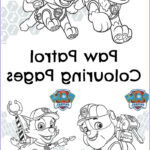 Paw Patrol Coloring Book New Images Paw Patrol Pups And The Pirate Treasure Colouring Page