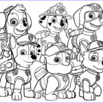 Paw Patrol Coloring Book New Photography Paw Patrol Coloring Book