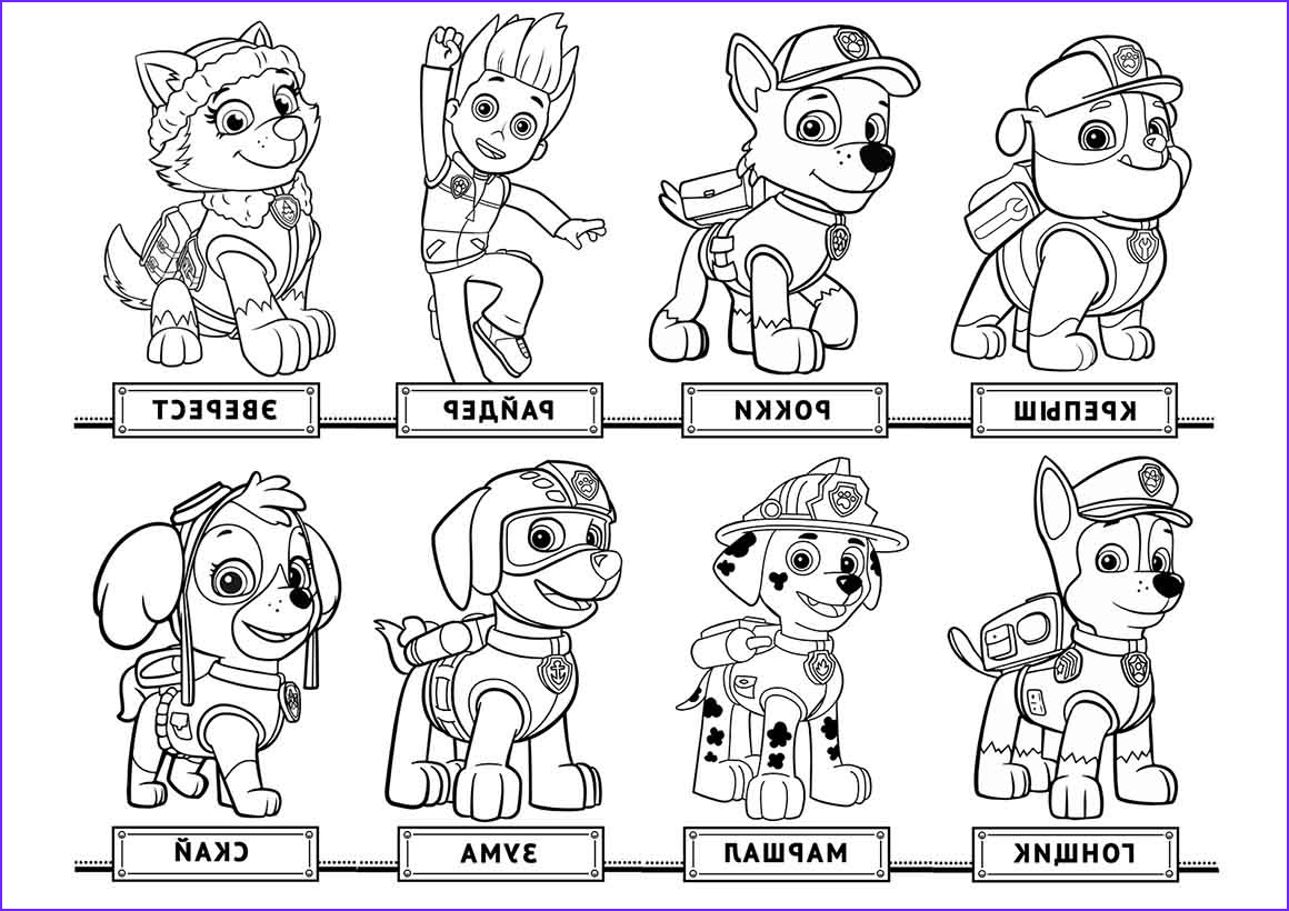 Paw Patrol Coloring Book Unique Stock Chase Paw Patrol Coloring Pages to and Print for Free