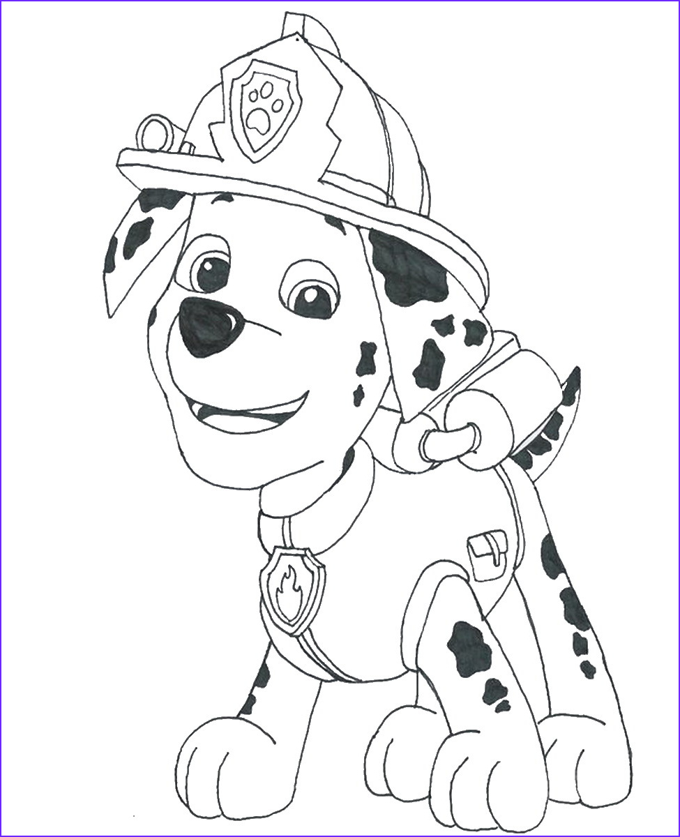 Paw Patrol Coloring Books Elegant Gallery 1000 Images About Paw Patrol On Pinterest