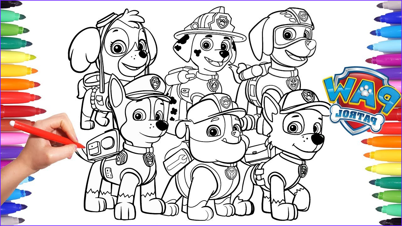 Paw Patrol Coloring Books New Photos Paw Patrol Coloring Book