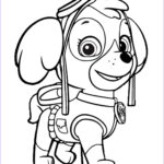 Paw Patrol Coloring New Photos Paw Patrol Coloring Pages