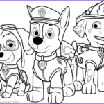 Paw Patrol Coloring Sheets Beautiful Collection Paw Patrol Coloring Page Free Paw Patrol Coloring Pages